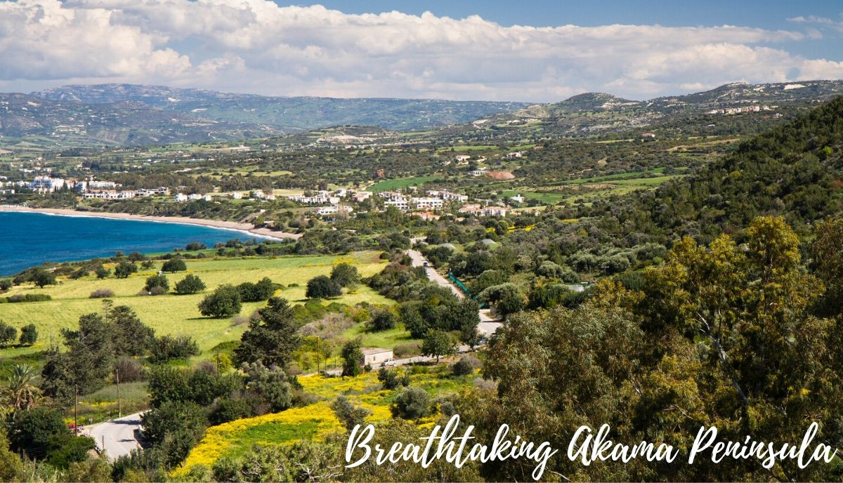 Akamas Peninsula is breathtaking in its view and is very picturesque and makes for a great addition to your Cyprus tour.