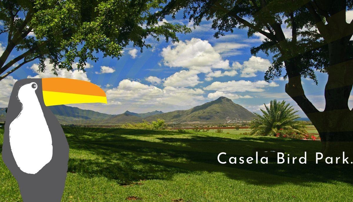 Casela bird park