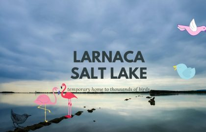 salt_lake_canva_final